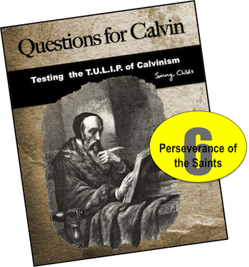 Questions for Calvin 6