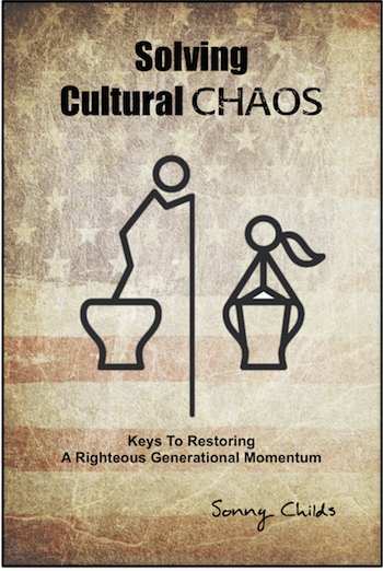 Solving Cultural Chaos book cover